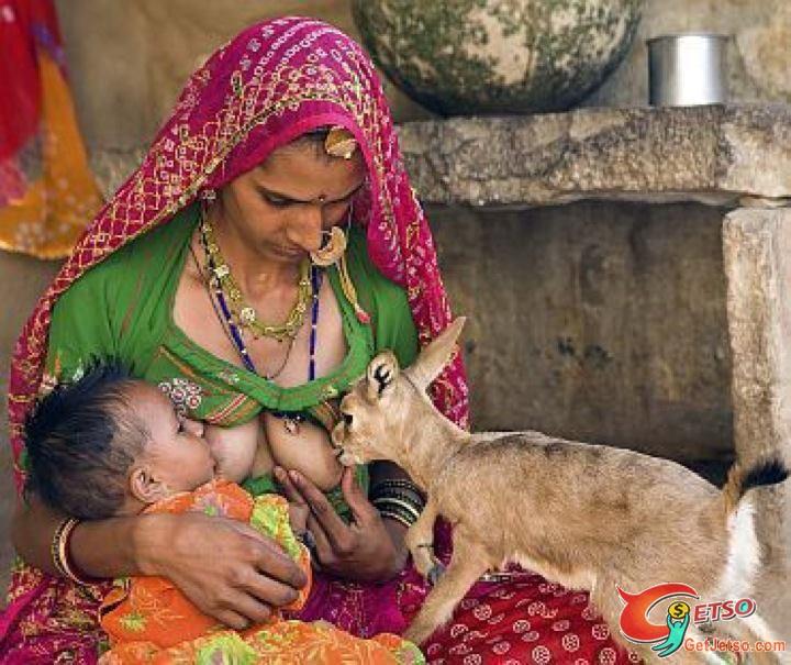 母爱始于天性【图片】 - 纯净心 - 纯净心