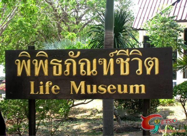 恐怖又神秘,泰國真實人體乾屍博物館(18+)圖片1